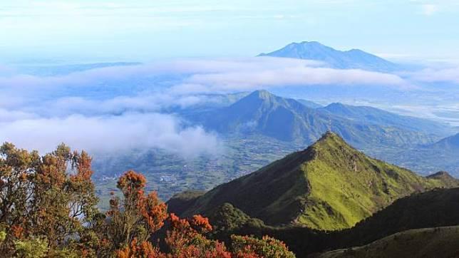 Pendaki Pemula Harap Perhatikan Tips Camping Berikut Agar Aman dan Nyaman